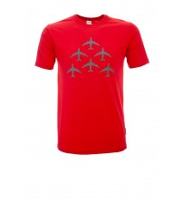 Tricou Formation